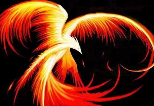 Phoenix by ?who?