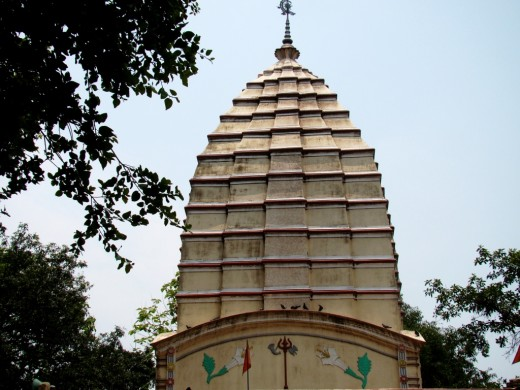 The pinnacle of the main temple. Though looks like a PIRHA type of temple, note the curved roof on which the pinnacle is constructed (resemblance more with Ekratna temple)