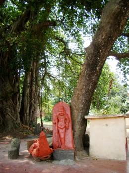 Stone idols of Ekpada Bhairav & Makara beneath a Neem tree