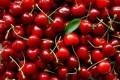 Fruit Health Benefits for Strengthening Your Immune System