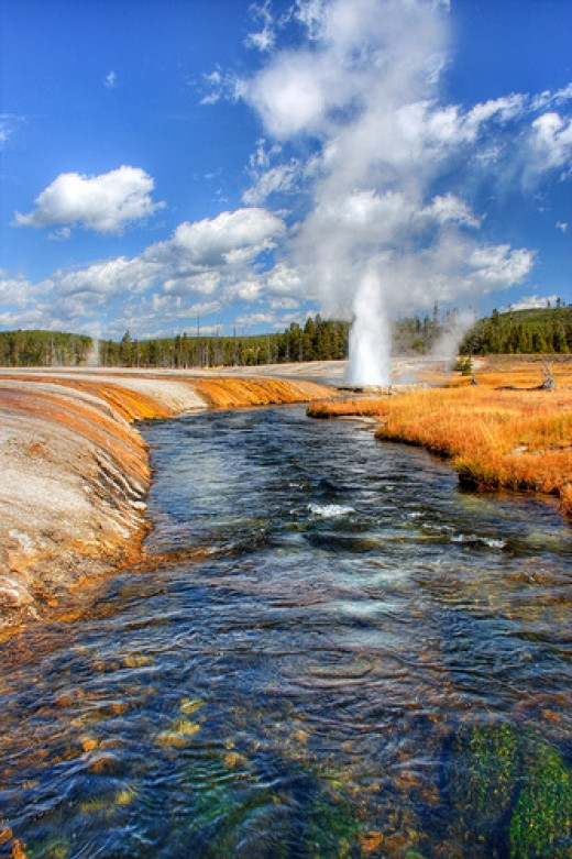 Therophiles live in hot springs around the world, such as this one in Yellowstone Park.