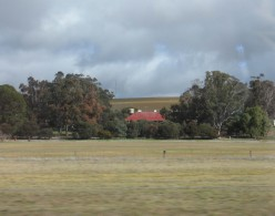 The ubiquitous red tin roofs of Australia