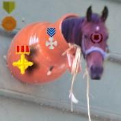 nicomp profile image