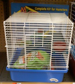 Typical wire hamster cage with plastic bottom