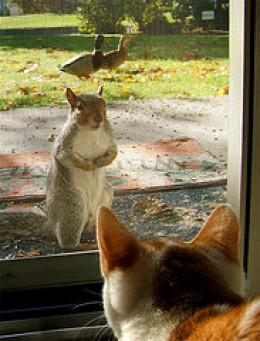 Open that door! Source: flickr.com