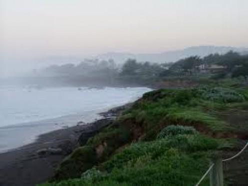 The beach where the elephant seals come