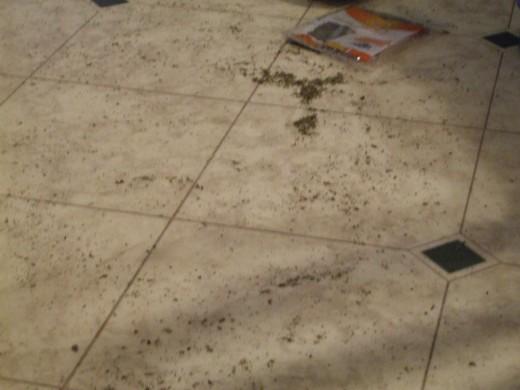 Dry, green, flaky.....catnip