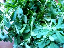 Fenugreek leaves - all pic belong to sofs