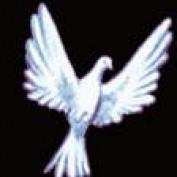 jean2011 profile image