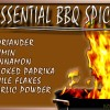 6 Essential Spices for BBQ Grilling