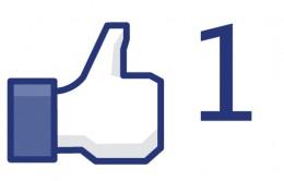 Facebook Like.  Take the Facebook Marketing Quiz