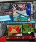 Choosing the Best and Easiest Rat Cage to Decorate