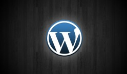 How To Build A Wordpress Website in 1 Day