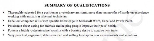 Had This Client Opted To Forgo The Summary Of Qualifications Section, Their  Résumé Would Not Only Have Been A Bit Empty, But It Also Wouldnu0027t Have Been  Able ...  Summary Of Qualifications For Resume