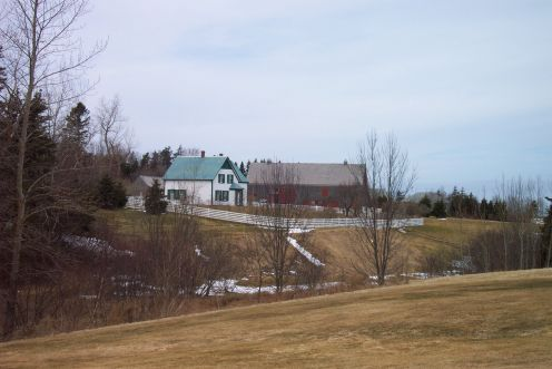 Image: Field Overlooking Green Gables House and Outbuildings