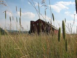 Worm Farms in Pennsylvania