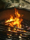Camping Life: Campfire Cooking