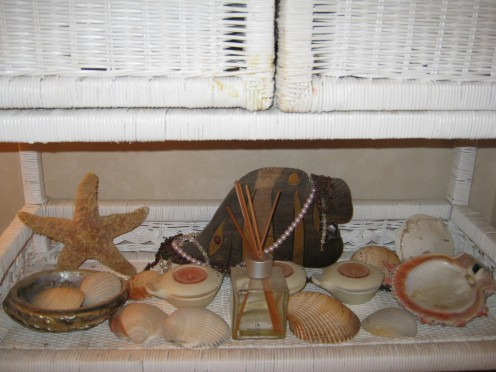 Seashells really do dress up a shelf.