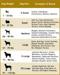 Choosing the right dog leash for your dog size and type