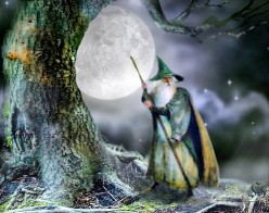 The Magical Wizard