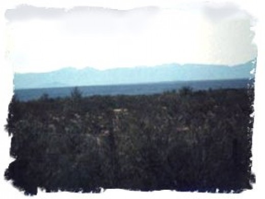 View from the ranch of the Sierra Occidental range in Mexico