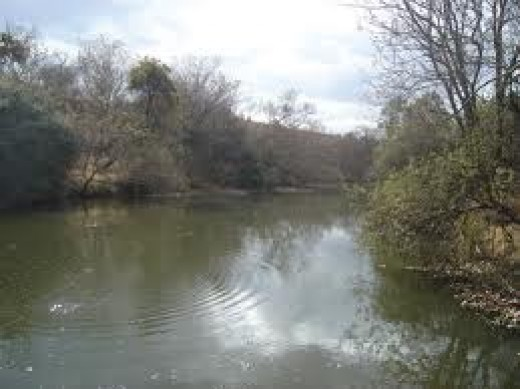 Crocodile River?