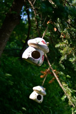 Two birdhouses on a pine tree.
