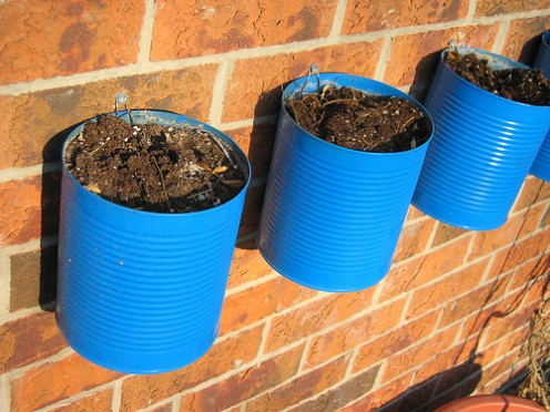 Wall Garden attached to bricks