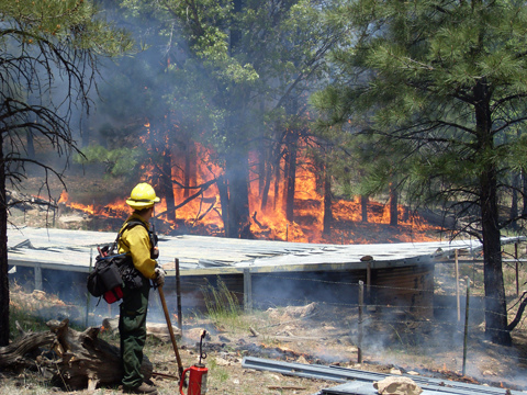 Firefighters can handle forest fires.