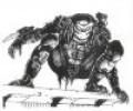 A watchful Predator