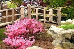free cross stitch pattern garden bridge