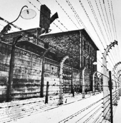 "A Review of Filip Mueller's ""Eyewitness Auschwitz"""