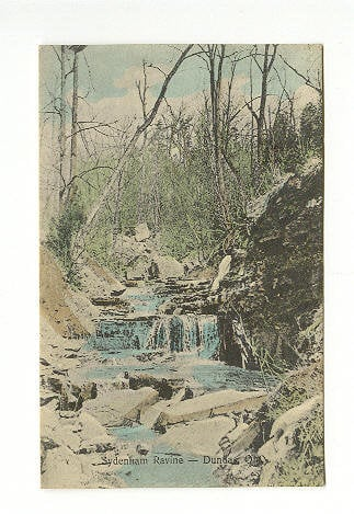 1909 Postcard calls this Sydenham Ravine. Now it is called Lower Sydenham Falls.