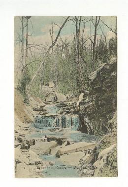 1909 Postcard calls this Sydenham Ravine. Now it is called Lower Sydenham Falls.