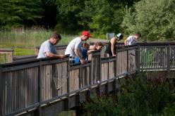 Crabbing at Bride Brook Bridge
