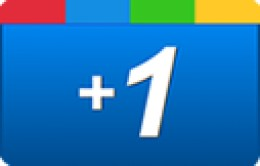 Google +1 Button. Social network and like button
