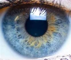 Blue, blue eyes