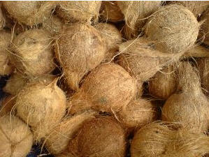 Coconuts for Coconut Chicken Sauce