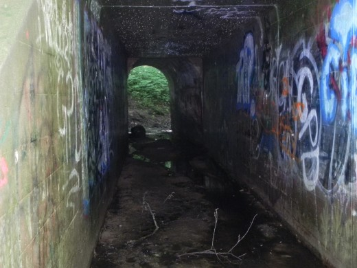 An unusual, seemingly out-of-place tunnel was constructed above the Punchbowl
