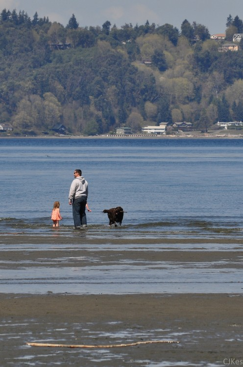 A family plays on the beach at Dash Point