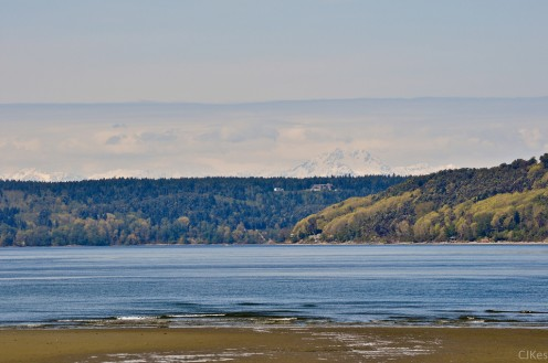 View from Dash Point Beach with the Olympic Mountains in the distance