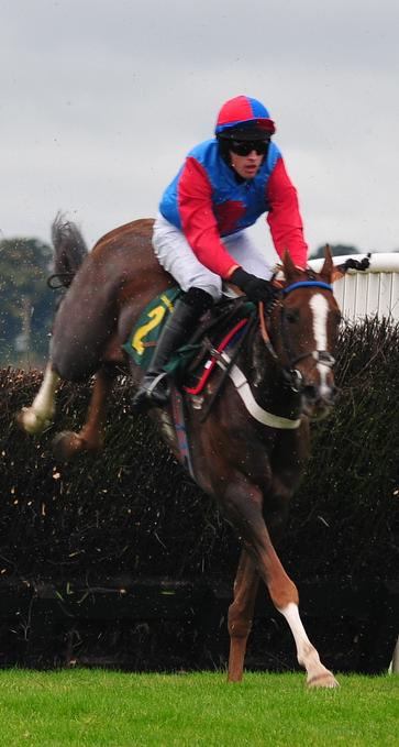 Steeplechase, adapted by Aficionada