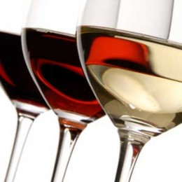 The different types of wine glasses explained beginner style