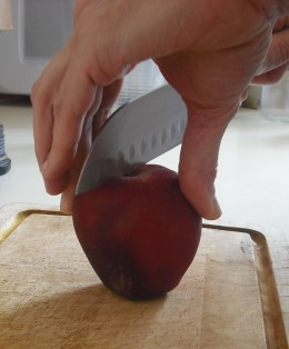 First cut the apple in half.