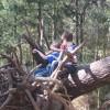 Do Kids Still Climb Trees?