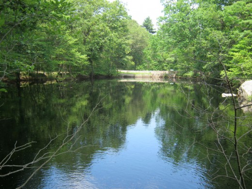 Lower Mill Pond