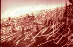 Tunguska aftermath