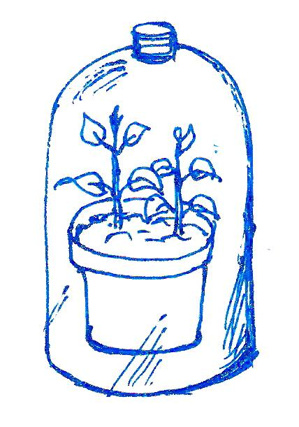 Make your own propagator with a plastic bottle