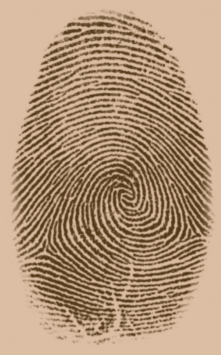 A typical fingerprint