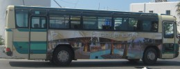One of the Paros buses